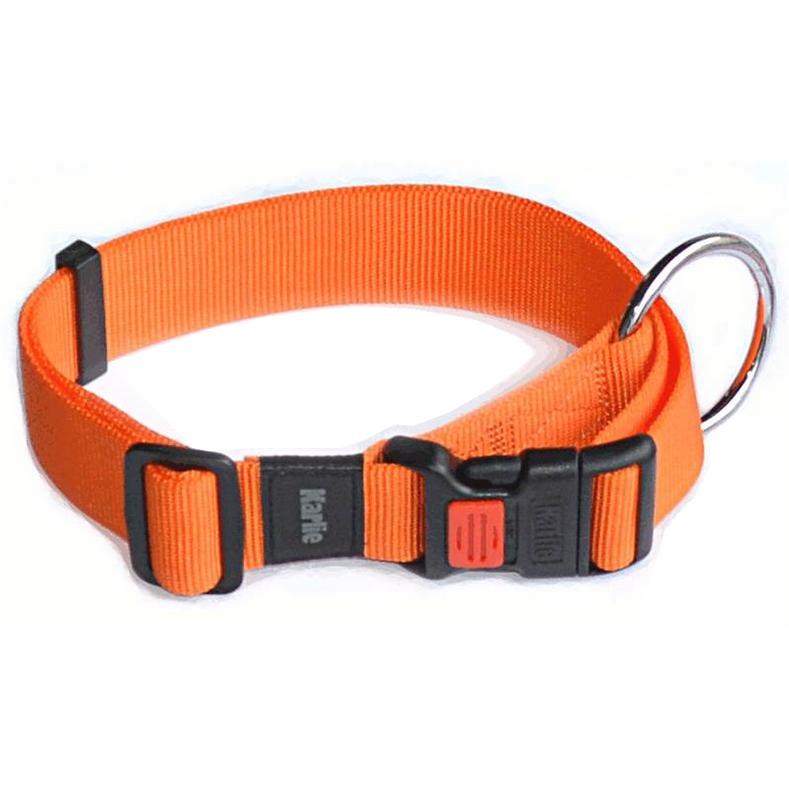collier pour chien en nylon